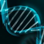 DNA解析サービスと医療保険に興味大。