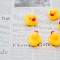日経ヴェリタス2015年4月5日号に確定拠出年金の取材記事が掲載されました!